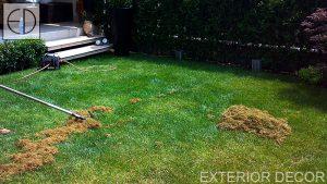 аериране на тревна площ