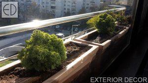 balkon-s-vechnozeleni-hrasti