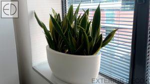 Малки растения в овална саксия