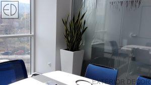 interiorno-ozelenqvane-na-ofisi