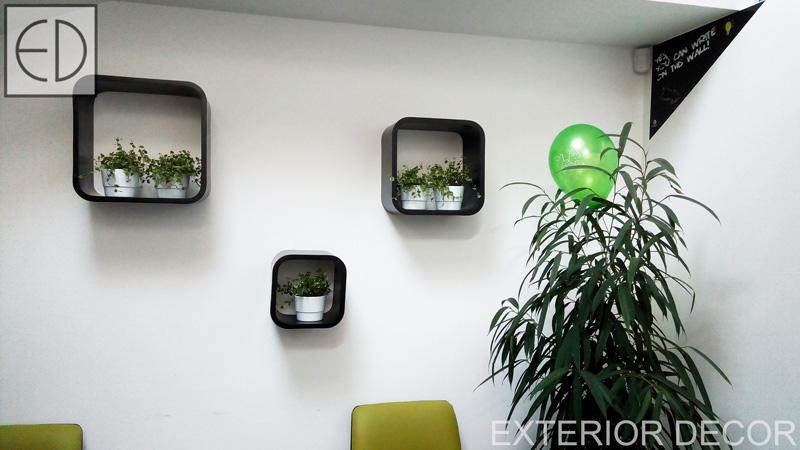 озеленяване-по-стената