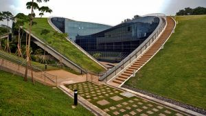 singapore green roof art school
